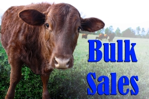 Bulk-Sales-Icon1